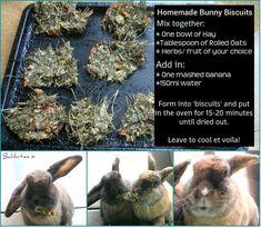 treat recipe for pet bunny