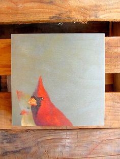 "one lovely cardinal adorns this 8"" x 8"" wood print by mincing mockingbird"