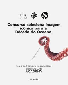 """Ocean Immersion® on Instagram: """"A HP lançou com a The Ocean Agency um concurso para criar uma imagem icônica para a Década do Oceano, a ideia é que os participantes…"""""""