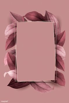 premium illustration of Rectangle foliage frame on pink Rectangle foliage frame on pink background vector Phone Wallpaper Images, Framed Wallpaper, Flower Background Wallpaper, Cute Wallpaper Backgrounds, Pretty Wallpapers, Flower Backgrounds, Aesthetic Iphone Wallpaper, Frame Background, Iphone Backgrounds