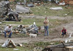 Searchers working the Rancho Brazos neighborhood in Granbury , Texas, try to coax a mother dog to them while searching for unaccounted residents, Thursday, May 16, 2013. Ten tornadoes touched down in several small communities in North Texas overnight, leaving at least six people dead, dozens injured and hundreds homeless. (AP Photo/The Fort Worth Star-Telegram, Paul Mosley)