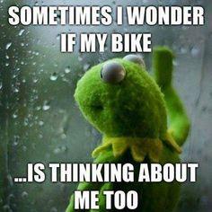 I know she is.... #Bikerlife #bikerhumor #ChopperExchange