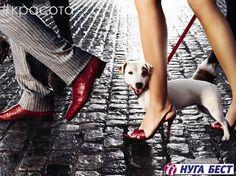 Потливость ног  Потливость ног – это проблема, которая создает массу неудобств. Излишняя потливость является причиной не только неприятного запаха, но и дискомфорта. Эта проблема заставляет людей избегать общественных мест и лишний раз снимать обувь. Пот не имеет запаха. Запах провоцируют разлагающиеся бактерии. Повышенная потливость ног может стать причиной появления грибковых и инфекционных заболеваний.  Для того чтобы избавиться от неприятного запаха, необходимо уменьшить потоотделение…