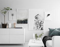 White owl, posters
