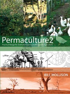 Permaculture 2: Practical Design for Town and Country in Permanent Agriculture