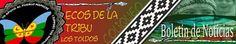 Ecos de la Tribu de Coliqueo: ECOS ORIGINARIOS | Noticias y Articulos 8-Dic.