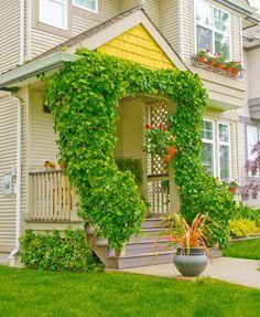 Twining Ivy auf symmetrische Beiträge und Geländer akzentuiert mit einem hängenden Pflanzer bepflanzt mit rosa, orange und rote Petunien. Außerdem stiehlt eingetopften Landschaft Gras auch im Rampenlicht.