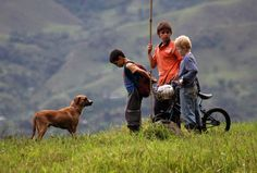 Los Colores de la Montaña, Colombia 2010   Carlos César Arbeláez se estrena en la ficción, tras el paso por el género documental, con esta verdadera joya del cine latinoamericano rodada en la Pradera, un pueblo de la cordillera de los Andes situado en la región que mejor conoce por haber nacido en 1968, Antioquia.
