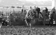 'Rodeo' Photographer Jonas Gerhardt