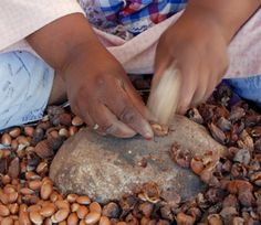 Images of Argan Oil - Google Search