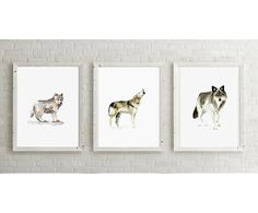 Set of 3 Wolf giclee Prints - Wolves Watercolor - Animal Paintings - Wolf Art - Painting Wolf illustration - Drawing wolves