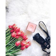 Sony camera and pink candle flatlay