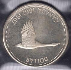 Welcome to the top 10 list of rare silver dollars. Canadian silver dollars are among some of the rarest silver coins ever made. They are highly coveted by collectors and their values have generally risen over time. Canadian Dollar, Canadian Coins, Silver Dollar Coin, Silver Coins, Thousand Dollar Bill, Old Coins Value, English Coins, Buy Gold And Silver, Coins Worth Money