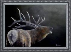 Elk Looking Back (http://www.e-artdesign.com)