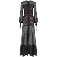 Elie Saab Lace Panel Gown ($6,790) ❤ liked on Polyvore featuring dresses, gowns, floor length evening gowns, floor length ball gowns, holiday dresses, cocktail gown and evening ball gowns