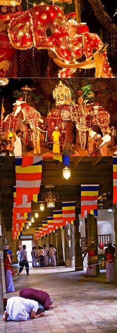 Esala Perahera, #Kandy, #SriLanka  ทัวร์ศรีลังกา http://www.pandktraveldesign.com/ทัวร์ศรีลังกา-Srilanka-6-D-4-N-1154