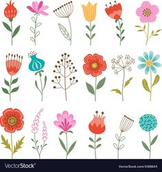Set of colorful flowers isolated on white background. Download a Free Preview or High Quality Adobe Illustrator Ai, EPS, PDF and High Resolution JPEG versions. ID #4186644.
