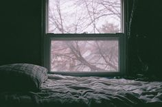 cozy window