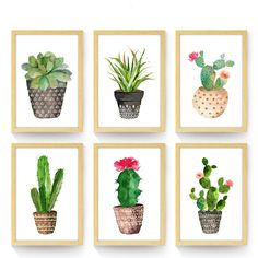 Cheap canvas painting, Buy Quality paintings home decor directly from China art print poster Suppliers: Nordic Green Plant Garden Mural Art Print Poster Wall Picture Oil Painting Home Decor Kids Children Living Room Canvas Painting Cactus Painting, Watercolor Cactus, Cactus Art, Watercolor Art, Cactus Plants, Cacti, Succulents Painting, Home Wall Art, Wall Art Decor