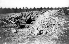 Ohrdruf, Germany, German civilians forced to dig graves for the camp victims.  The Ohrdruf camp was liberated by the 80th Division of the American army.