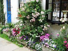 Flowers in Rye