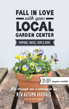 Fall In Love With Your Local Garden Center