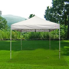 Impact Canopy 10x10 ft. Pop Up Canopy Tent Folds To 42 in. Tall Instant Canopy