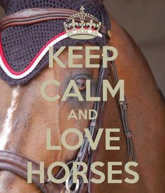 KEEP CALM AND LOVE HORSES. Another original poster design created with the Keep Calm-o-matic. Buy this design or create your own original Keep Calm design now. Funny Horses, Cute Horses, Pretty Horses, Horse Love, Beautiful Horses, Inspirational Horse Quotes, Inspiring Quotes, Horse Riding Quotes, Equestrian Quotes