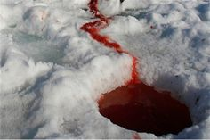 A lake of blood. The dragon slayer,  he beat them to it...