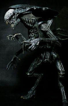 Alien Convenant, Giger Alien, Alien Art, Predator Movie, Predator Alien, Xenomorph, Alien Queen, Alien Design, Alien Concept Art