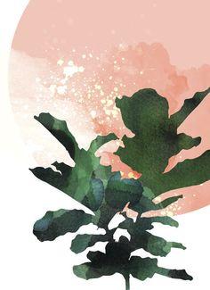 Fig leaf plant wall art botanical art print by WhiteDoePrints