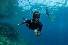Snorkeling Day Tour with Professional Guide in Ko Lanta - TripAdvisor