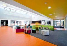 School Design Splash Colour