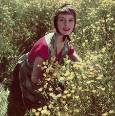Brigitte Bardot debuting in 1952.