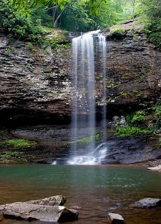 Cloudland Canyon, GA.