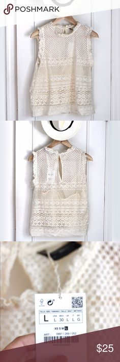 Zara knit lace top NWT Zara cream colored knit lace top with separate tank top lining. New with tags. Fitted and sleeveless. 83% cotton. 17% nylon. Zara Tops