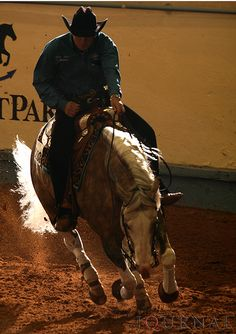 Reining ~ large circle...Fast! Collection in one hand. You've never rode a horse until you've reined ;)