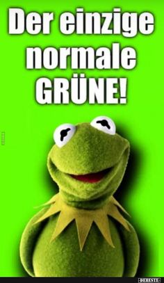 Der einzige normale Grüne! | Lustige Bilder, Sprüche, Witze, echt lustig Haha, Good Humor, Kermit, Funny, Quotes, Bobbers, Frogs, Motto, Smile