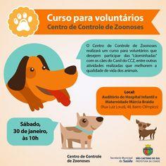 BONDE DA BARDOT: SP: CCZ de São Caetano promove curso para voluntários da causa animal (30/01)