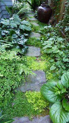 Darcy Daniels garden, Portland, Oregon