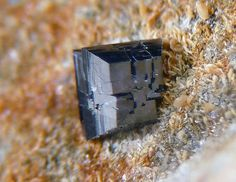 Anatase. Canaglia Mine, Porto Torres, Sassari Province, Sardinia, Italie Taille=2 mm Collection et photo Antonio Gamboni