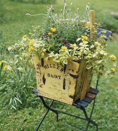 love the yellow box