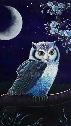 Nachtgrüße - New Ideas Owl Bird, Bird Art, Cute Owls Wallpaper, Graffiti Kunst, Owl Artwork, Owl Tattoo Design, Owl Pictures, Beautiful Owl, Whimsical Art