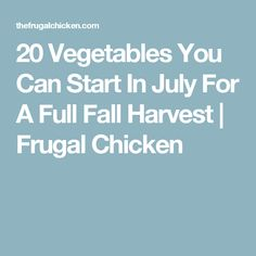 20 Vegetables You Can Start In July For A Full Fall Harvest   Frugal Chicken