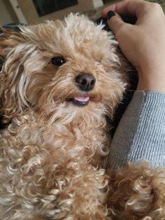Selfie  I'm a pretty girl! - http://ift.tt/2f3pAmk