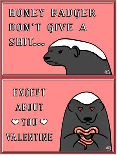 honey badger valentine - LOL at the snake-heart Funny Valentine, Valentine Day Cards, Valentines, Saint Valentine, Just For Laughs, Just For You, Haha Funny, Funny Stuff, Funny Things