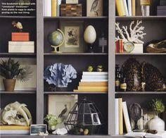 bookshelf display with natural objects