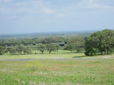 ...in the distance...TX Hill Country! Foreground:  TX Wildflowers!
