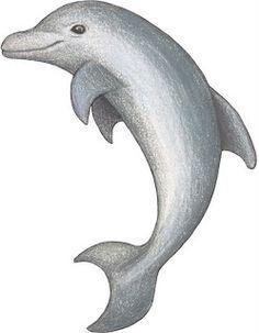 Dibujos de animales del mar-Imagenes y dibujos para imprimir