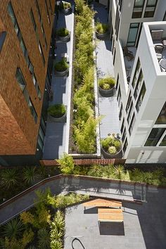 300 Ivy Residential Housing by Fletcher Studio 08 « Landscape Architecture Works   Landezine #residentiallandscapearchitecture